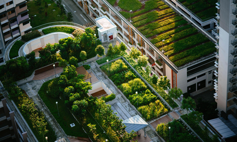 Propuestas innovadoras para construir ciudades más verdes