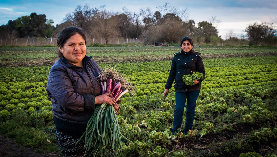 Las mujeres rurales, claves en la producción de los alimentos del mundo