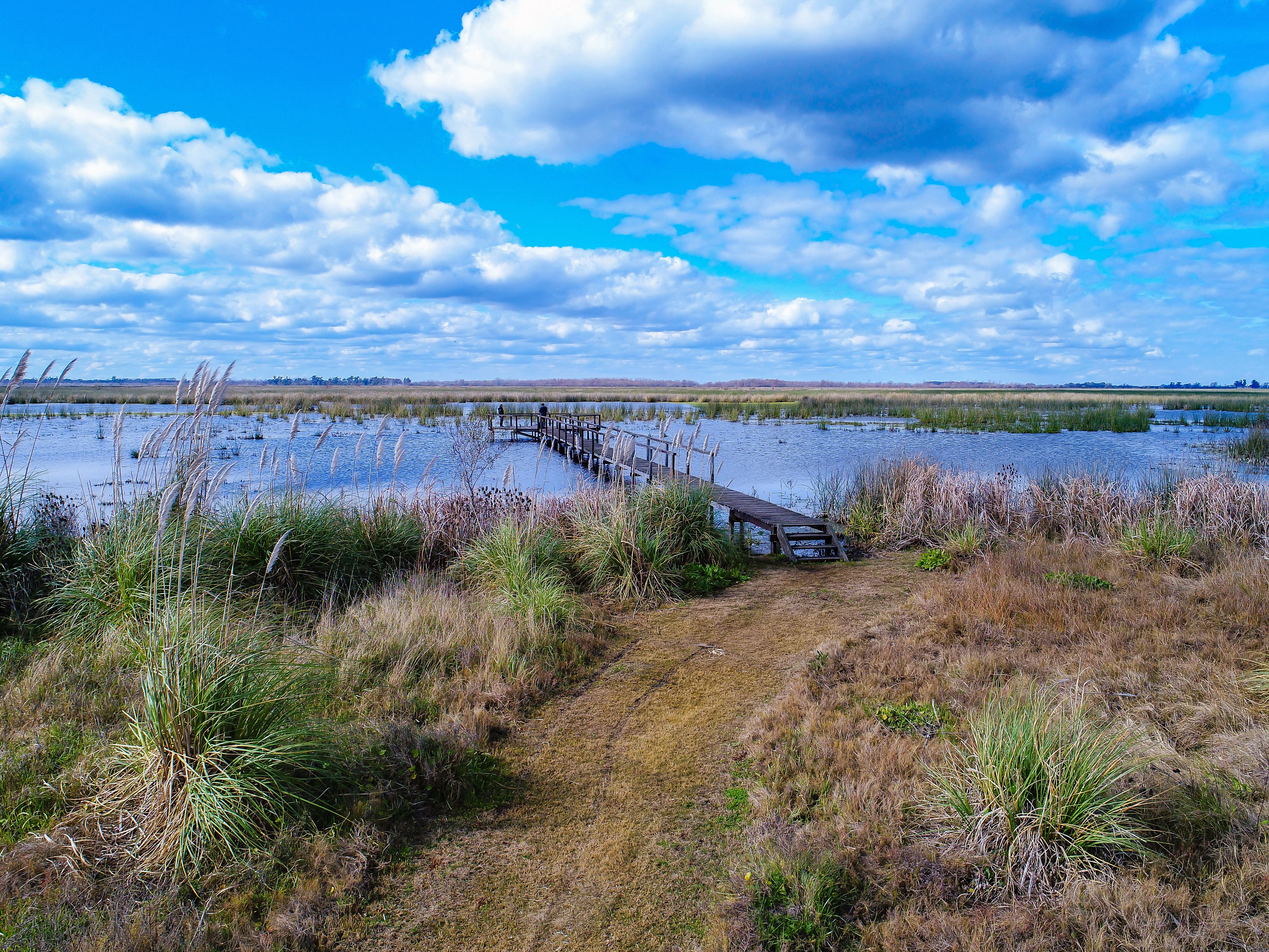 Crearon un parque nacional que ayudará a evitar inundaciones en la cuenca del Luján