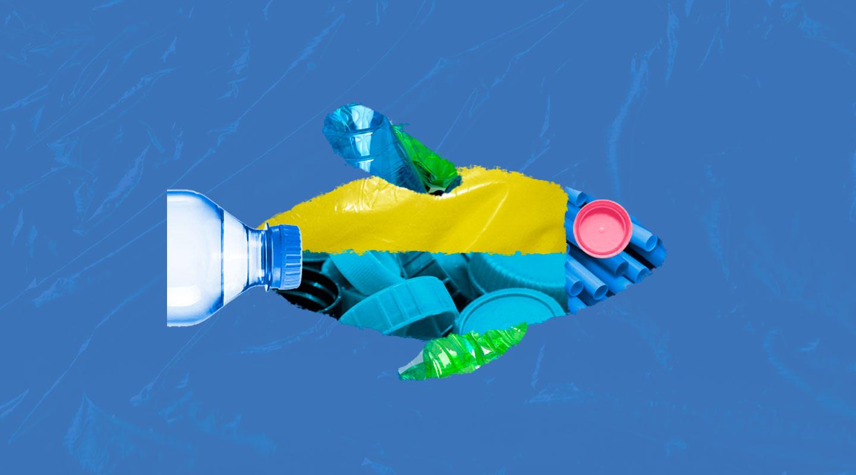 SUSTENTABLES   El año de la lucha contra la contaminación por plásticos