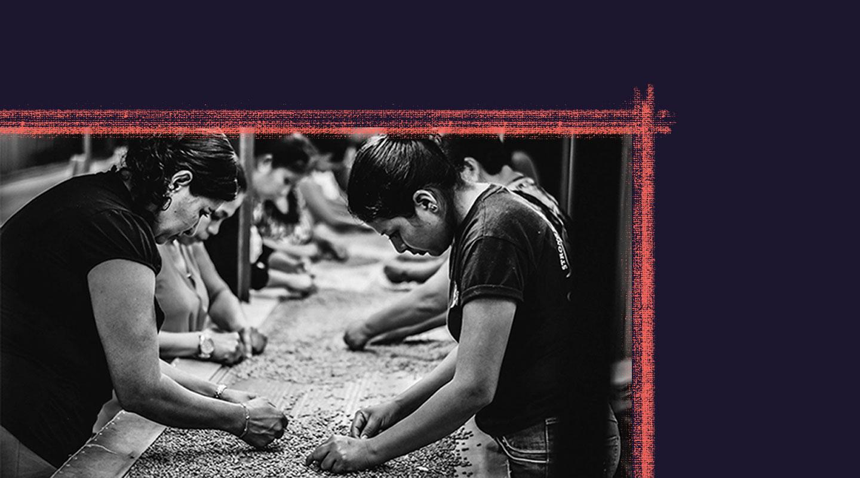 Erradicar el hambre depende del libre comercio