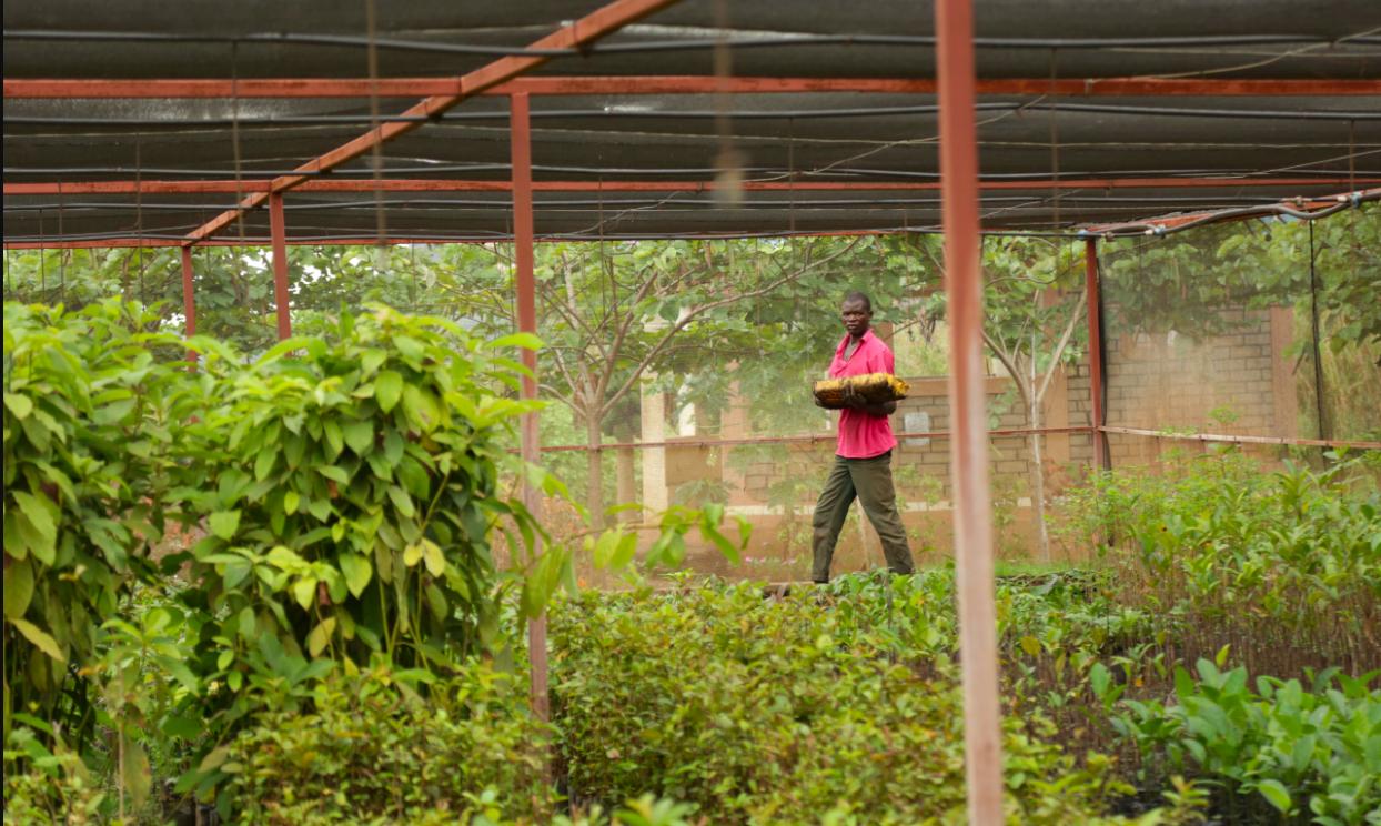 El hambre aumenta por tercer año consecutivo por el cambio climático