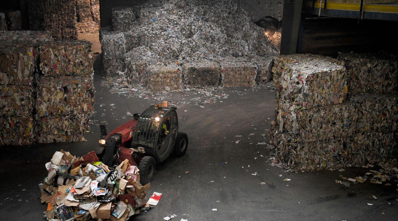 Más allá del cartón: cómo una cooperativa de cartoneros logró generar un modelo de reciclaje inclusivo