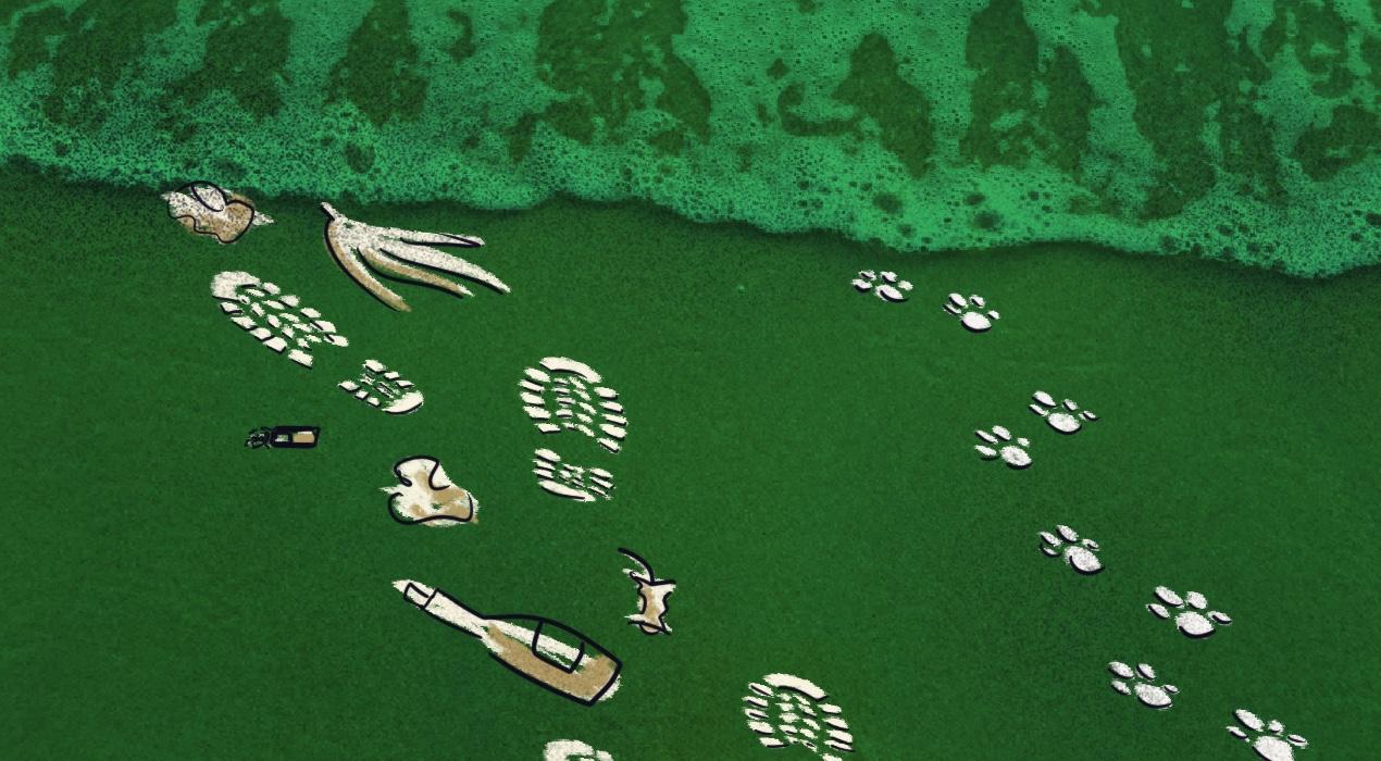 Playas de plástico en Buenos Aires: el mejor (o peor) ejemplo del impacto de nuestro consumo