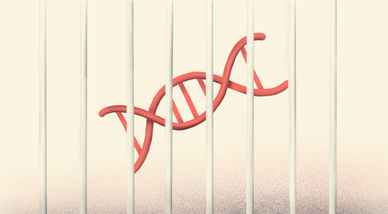 Detectives con ADN: el Gobierno planea crear un banco genético de delincuentes