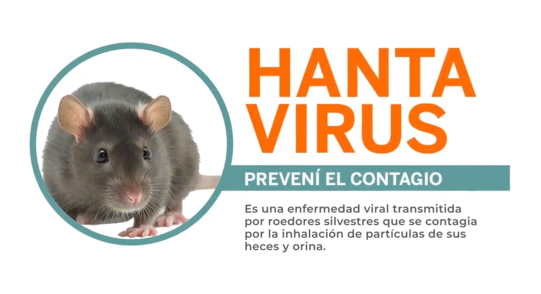 El brote de hantavirus en Chubut es el más grave, letal e inusual de su historia