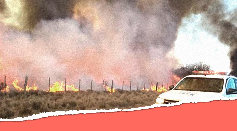 Por qué somos responsables de que se quemen el doble de bosques y pastizales que en 2015