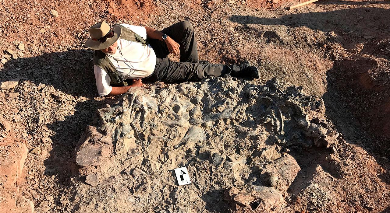 Dinosaurios de hace 220 M de años
