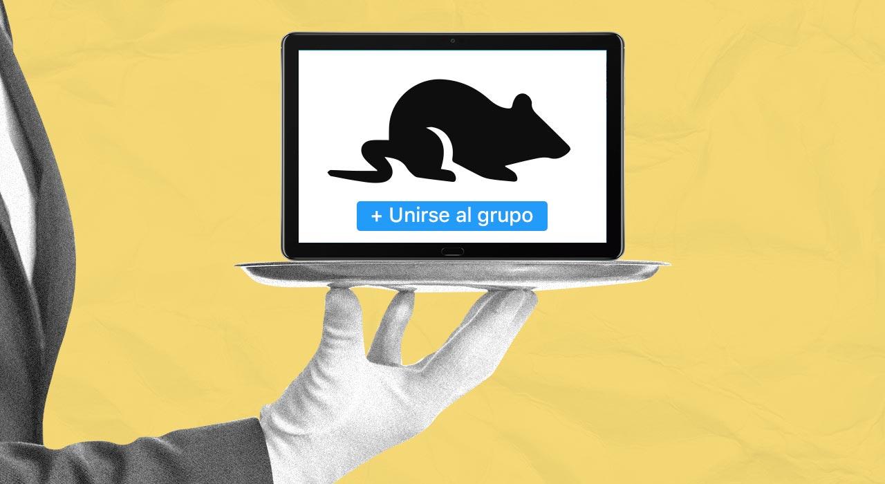 Crisis y catarsis: la caza de ofertas reúne en Facebook a una comunidad de 50 mil consumidores
