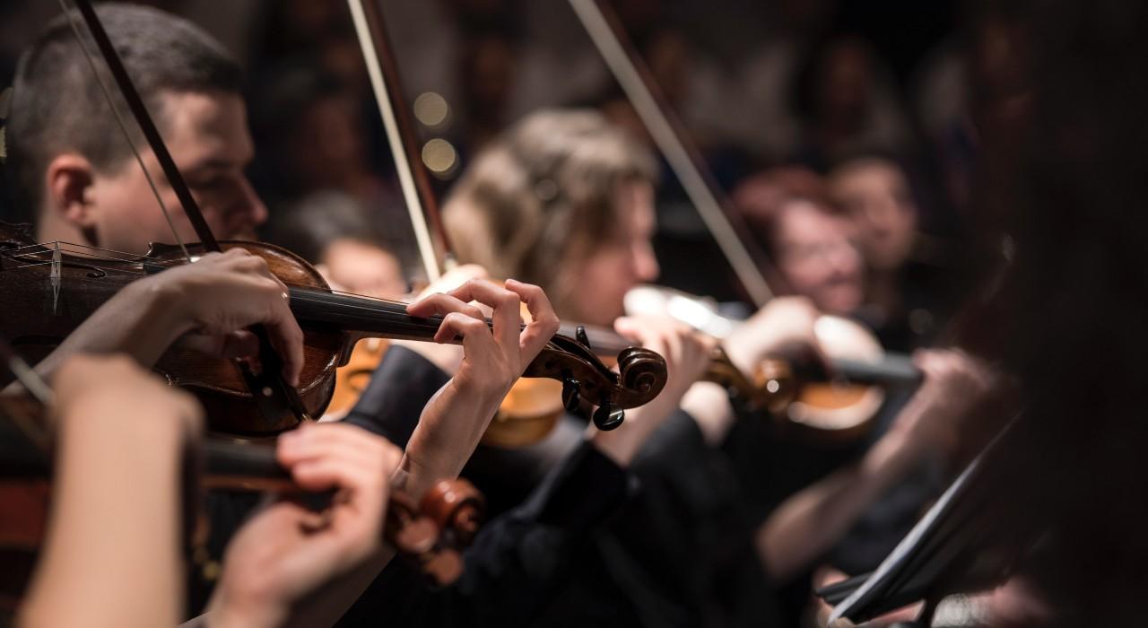 Para mejorar tu memoria, afinála como una orquesta