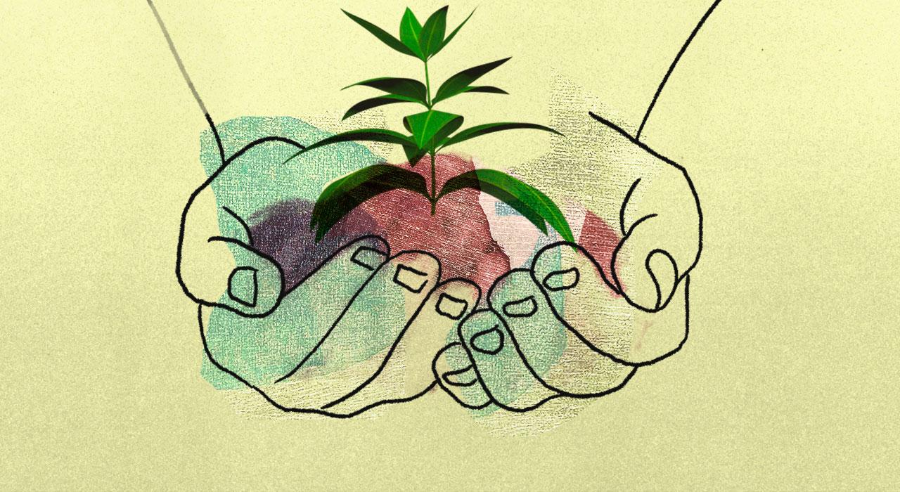 Cambio climático y usos del suelo: dos caras de una misma moneda