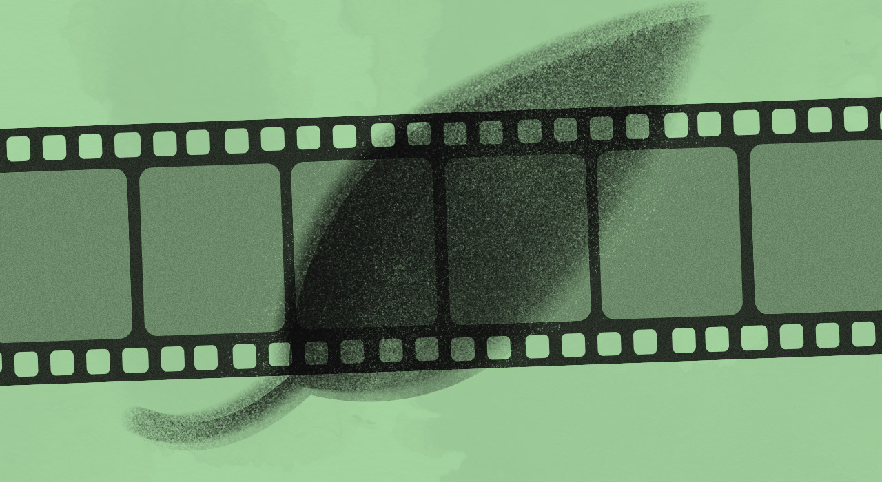 ¡El cine ambiental está de festejo! Se viene la décima edición del Green Film Fest en Buenos Aires
