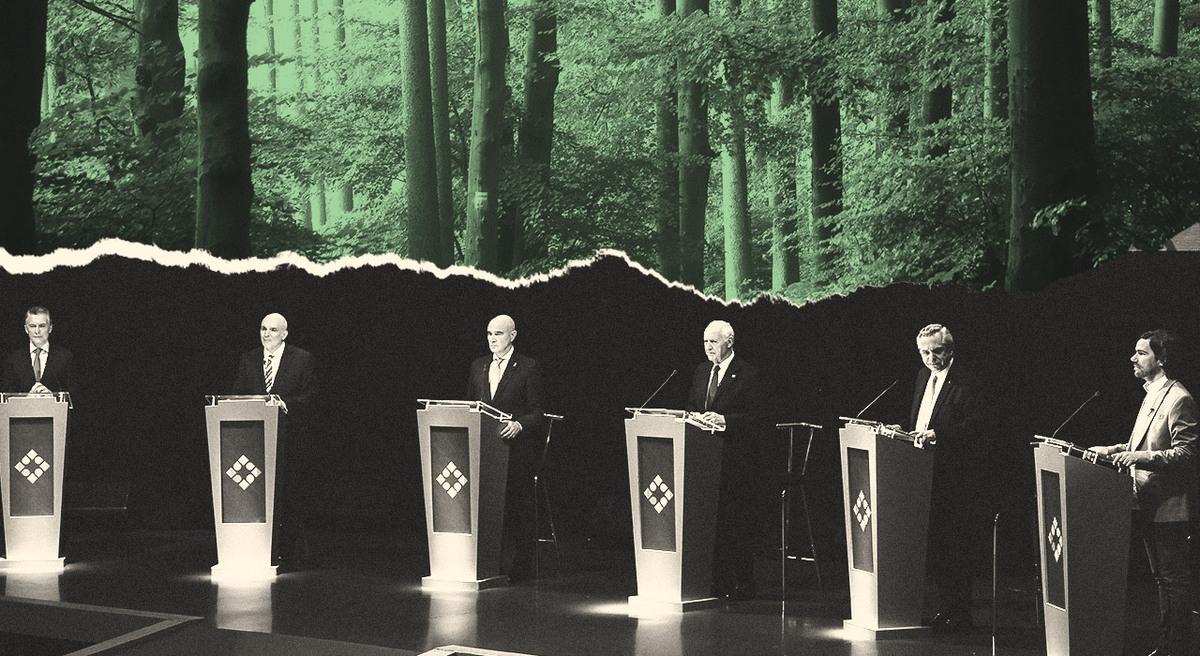 5 desafíos sobre ambiente para el próximo presidente argentino