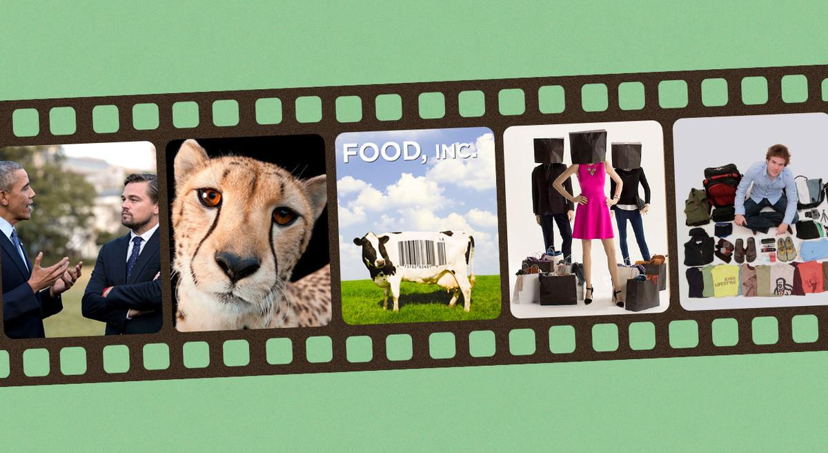 5 recomendaciones de cine ambiental para empezar el año y cuidar el planeta