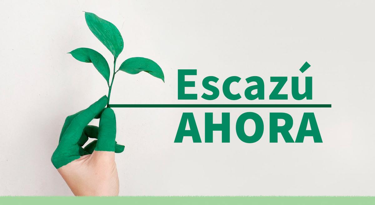 Asuntos ambientales: ¿por qué Argentina debe ratificar el Acuerdo de Escazú?