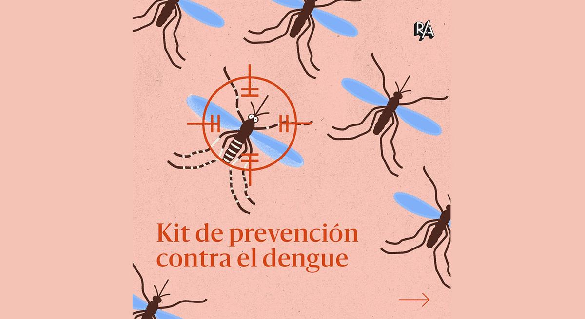 Dengue: una guía para evitar la reproducción de mosquitos y prevenir picaduras