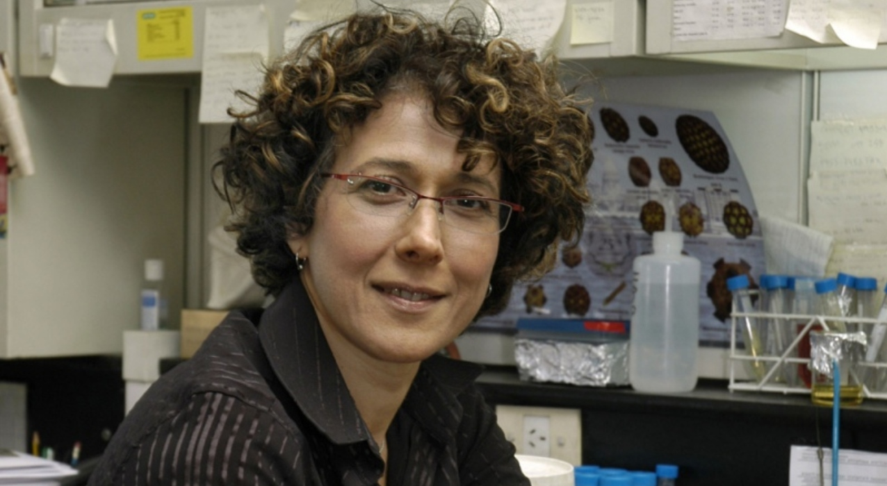Cómo trabaja Andrea Gamarnik, la científica que lidera el equipo que creó el primer test argentino para el coronavirus