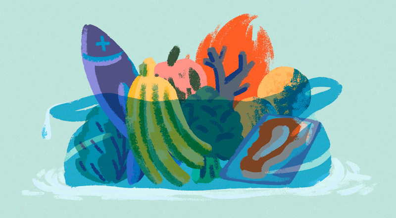 Producir comida sin dañar nuestro planeta: cómo debe actuar la industria para ser sustentable y qué podemos hacer nosotros