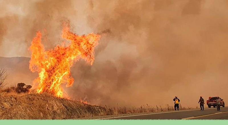 100 ediciones de PLANETA con una Argentina en llamas