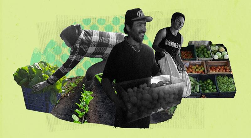 Experiencia Daireaux: cómo la agricultura y ganadería sustentables pueden ayudar a combatir la falta de trabajo