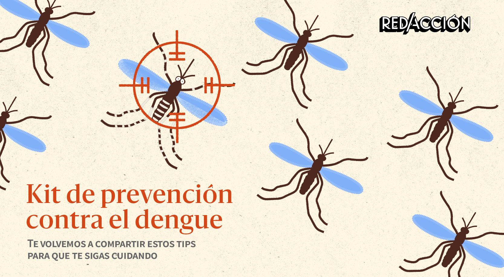 Dengue en Argentina: cómo prevenirlo y cuáles son sus síntomas