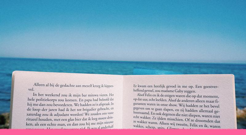 Lecturas de verano: todas las páginas de nuestro enero
