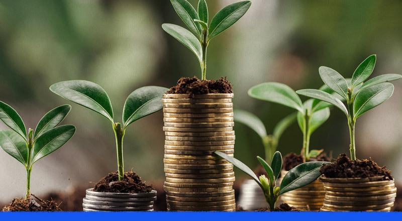 Inversiones de impacto: ¿cuáles son las últimas tendencias?