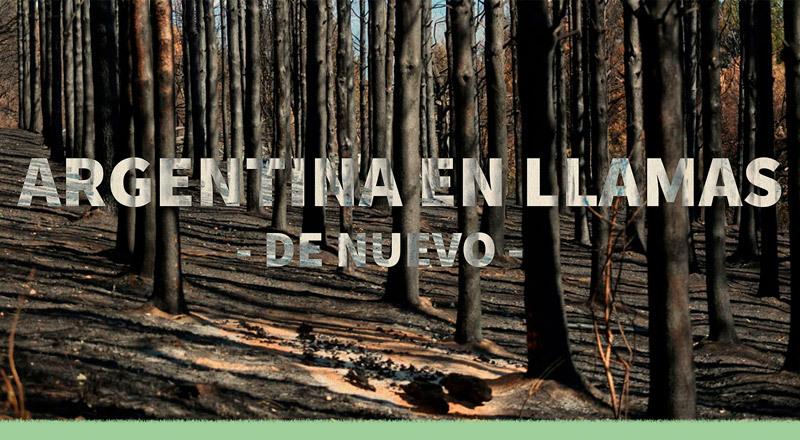 Incendios en Argentina: causas, responsables y efectos