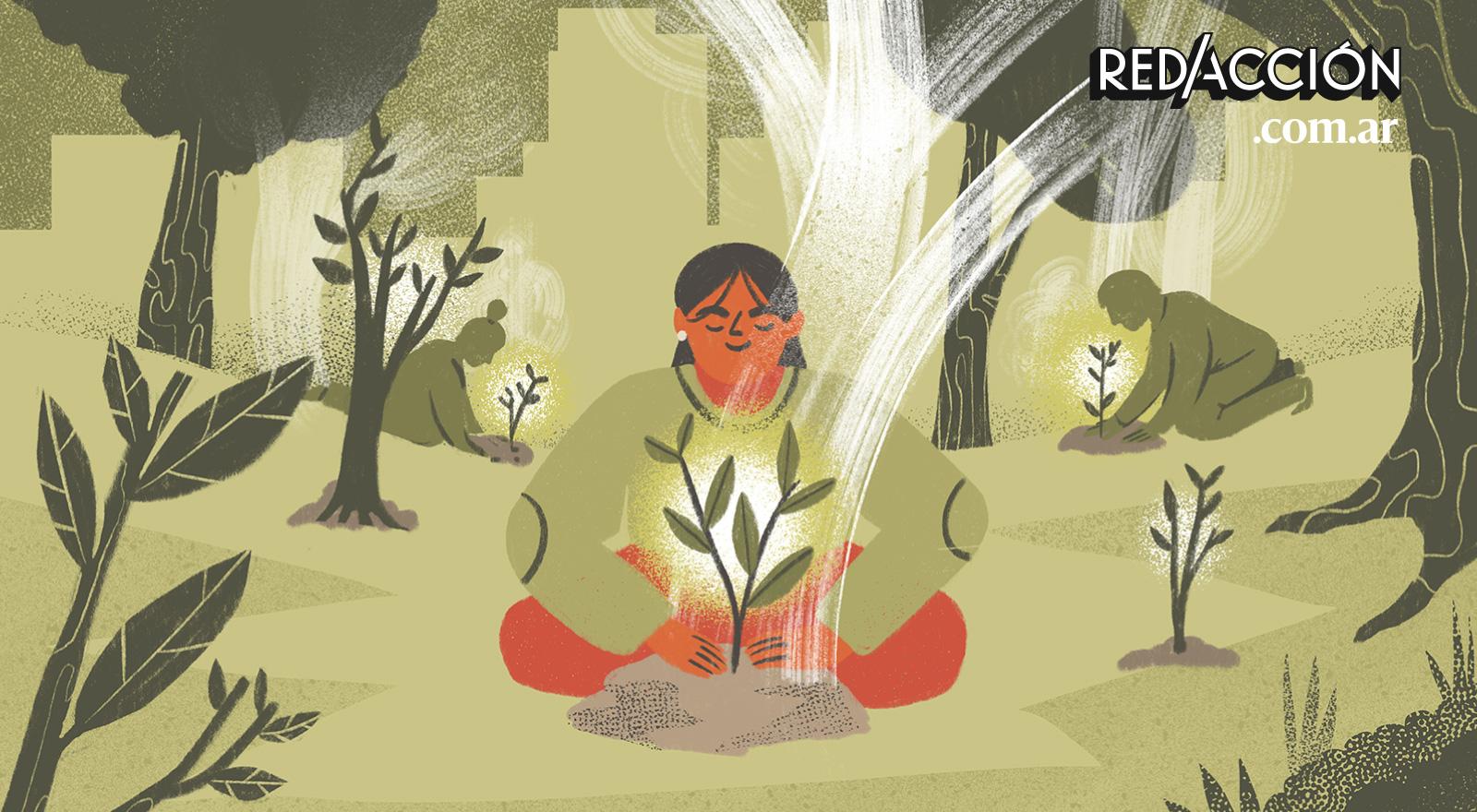 Campaña del mes: llenemos de bosques, vida y esperanza el planeta