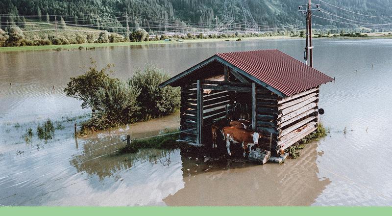 El cambio climático llegó... no con las inundaciones en Europa