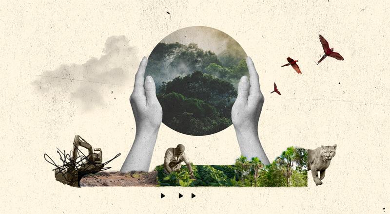 """Cuáles son los """"nuevos"""" empleos que pueden generar la Argentina y América Latina si se proponen cuidar la naturaleza"""