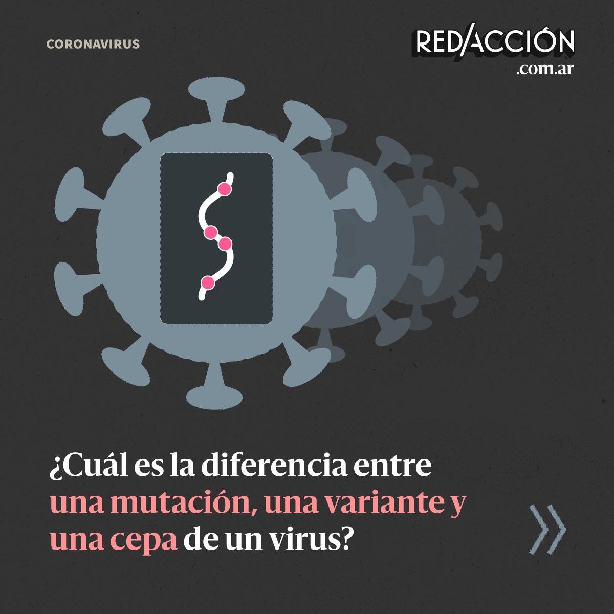 ¿Cuál es la diferencia entre una mutación, una variante y una cepa de un virus?