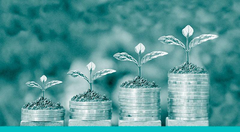 Montañas de dinero sobre las cuales crecen plantas.