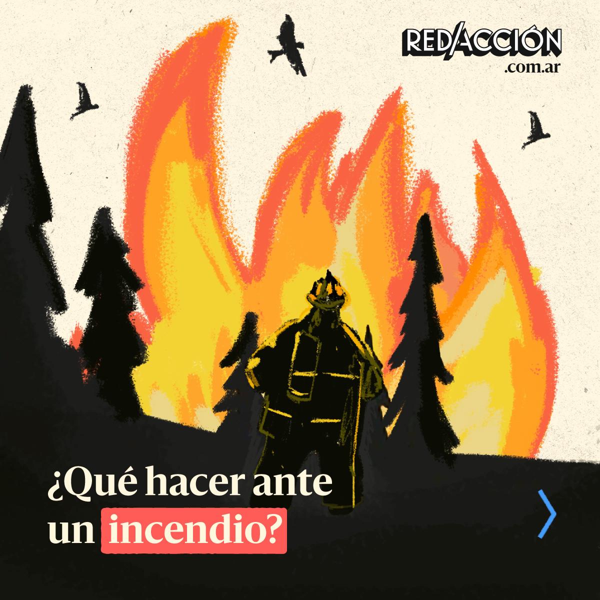 ¿Cómo prevenir y actuar ante una situación de incendio forestal?