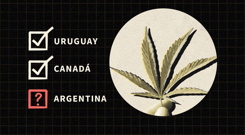 Legalizar el uso recreativo de la marihuana: argumentos a favor, en contra y lo que enseñan las experiencias de otros países