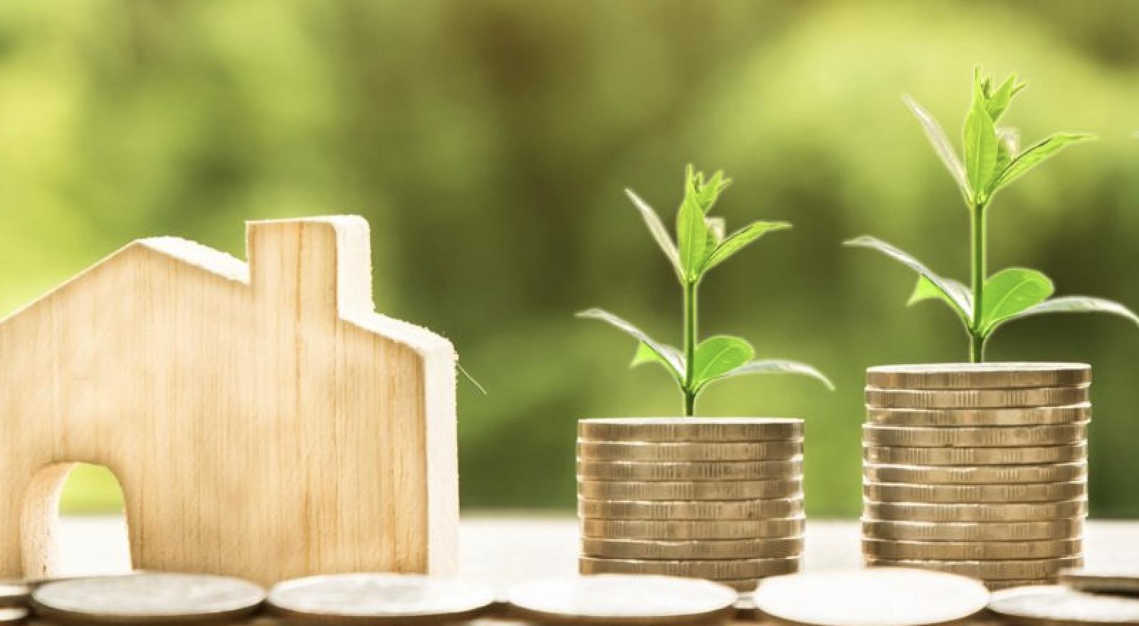 Cerrar la brecha entre la naturaleza y las finanzas