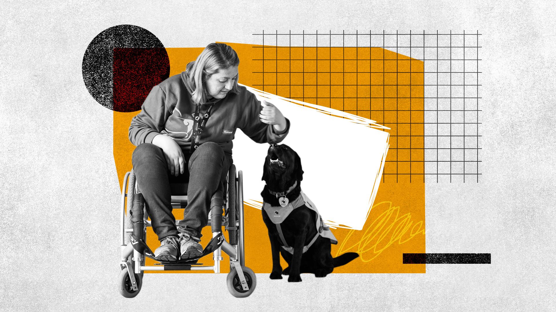 Los perros entrenados ayudan a las personas con discapacidades a vivir con autonomía